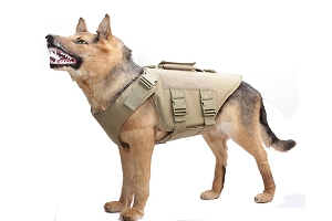 FIRESTORM TACTICAL LEVEL IIIA TACTICAL K-9 VEST IN BLACK LARGE